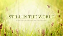 Still In The World