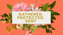 Gathered, Protected, Sent