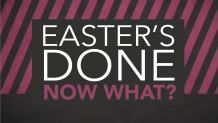 Easter's Done, Now What?