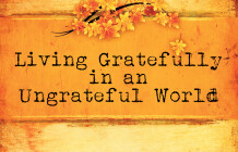Living Gratefully In An Ungrateful World