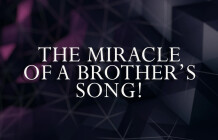 The Miracle Of A Brother's Song